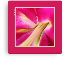 Inside A Lily Flower Canvas Print