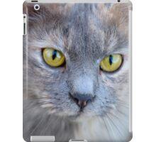 Candid Kitty iPad Case/Skin
