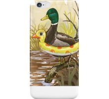 The geese iPhone Case/Skin