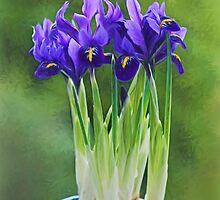 Irises - Impressions by Susie Peek