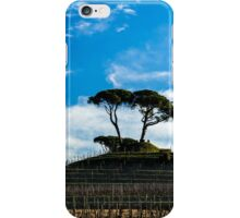Vineyard in late winter iPhone Case/Skin