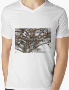 Bare Branches in Snow Mens V-Neck T-Shirt