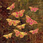 Vintage Butterflies by Vitta