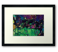 Pyroxene Crystals  Framed Print
