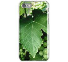 grape dots iPhone Case/Skin