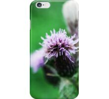 Thistle-in' a Tune iPhone Case/Skin
