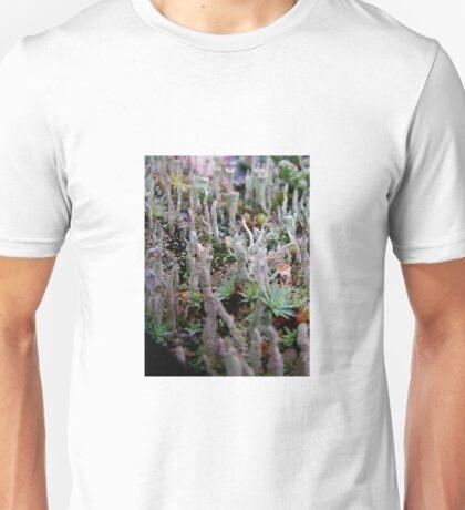 nordic nuances T-Shirt