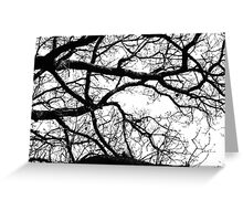 Silhouetted Branches Greeting Card