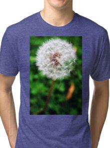 Wishes Tri-blend T-Shirt