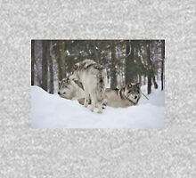 Look, over there, Paparazzi are back again - Timber Wolves Long Sleeve T-Shirt