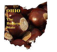 Ohio Map with State Nickname:  The Buckeye State by Havocgirl