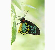 Cairns Birdwing Butterfly Unisex T-Shirt