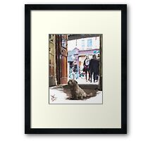 Peppy at Fallon and Byrne Framed Print