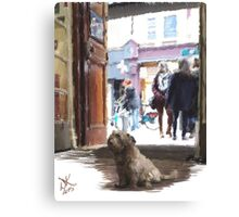 Peppy at Fallon and Byrne Canvas Print
