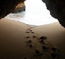 Foot steps in the sand by Devin Shaw