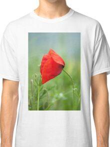 Wild red poppy Classic T-Shirt