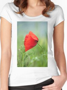 Wild red poppy Women's Fitted Scoop T-Shirt