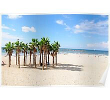 Palmtrees on the Tel Aviv Beach  Poster