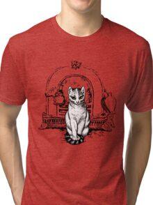 Eyewitness Tri-blend T-Shirt