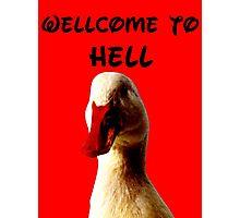 THE DEVIL DUCK Photographic Print