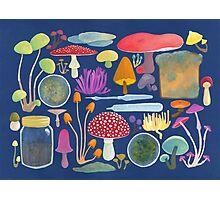 Mycology Photographic Print