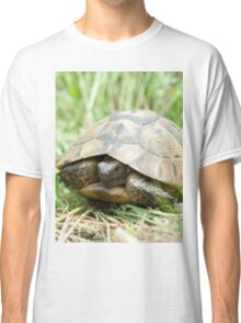 Tortoise in the meadow Classic T-Shirt