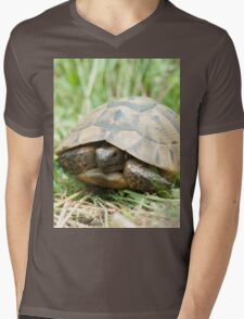 Tortoise in the meadow Mens V-Neck T-Shirt
