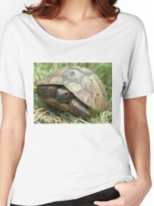 Central Asian tortoise (Agrionemys horsfieldii) Women's Relaxed Fit T-Shirt