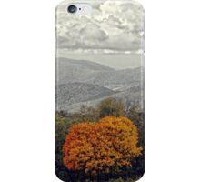 Lone Fall Tree iPhone Case/Skin