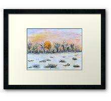 Winter Sun Framed Print