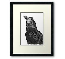 Raven Superhero Doodle Framed Print