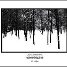 Deep Roots Poster, quote from Tolkein by Wayne King