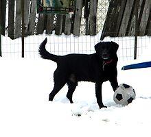 Snow Soccer by DustysPhotos
