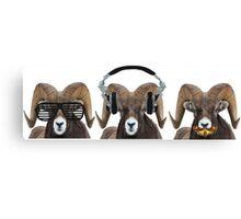 Silence of the Rams Canvas Print
