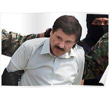 El Chapo Arrest Poster
