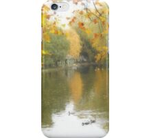 St Stephen's Green, October 2015 iPhone Case/Skin