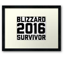 Blizzard 2016 Survivor Framed Print