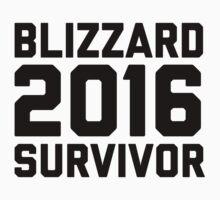 Blizzard 2016 Survivor One Piece - Short Sleeve