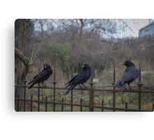 Murder of Crows - Paris Canvas Print