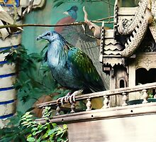 Beautiful Prisoner by DREWmatique