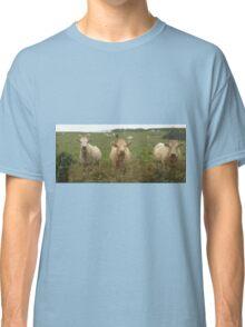 Curious Cork Cows Classic T-Shirt