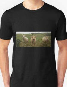 Curious Cork Cows Unisex T-Shirt