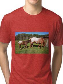 Appaloosa  Tri-blend T-Shirt