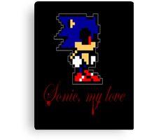 Sonic, My Love Canvas Print