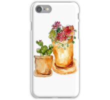 Cacti + Succulents iPhone Case/Skin