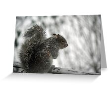 This white stuff is not amusing! Greeting Card