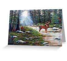 White Tail Creek Greeting Card