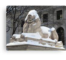 New York Public Library Lion Canvas Print