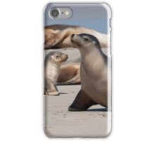 Sea Lions iPhone Case/Skin