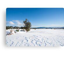 Snowy landscape. Canvas Print
